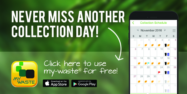 my-waste mobile app collection day