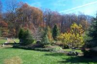 Arboretum 2