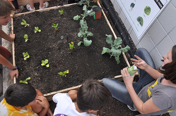 Woman explaining to children about the plants growing in soil
